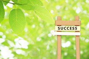 crm-success